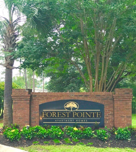 Lakewood Pointe Apartments: Forest Pointe Walterboro, SC